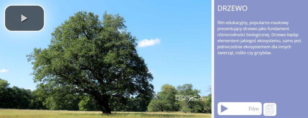 RB-Drzewo